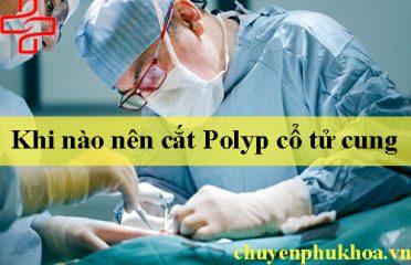 cat-polyp-co-tu-cung-khi-nao