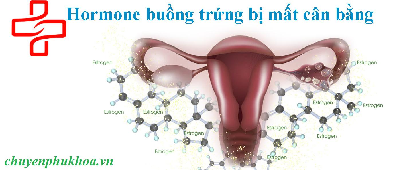 hormone-buong-trung-bi-mat-can-bang